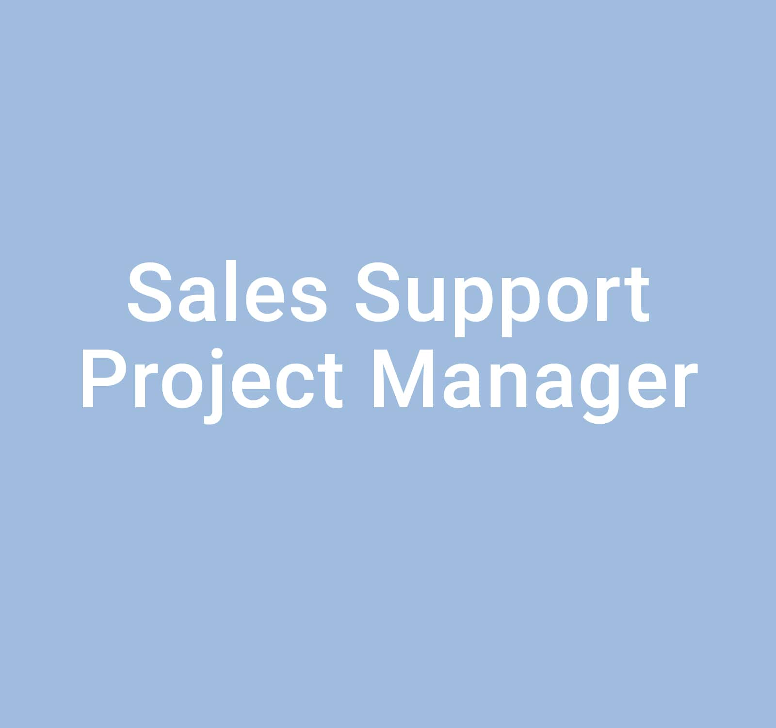 Sales Support Project Manager